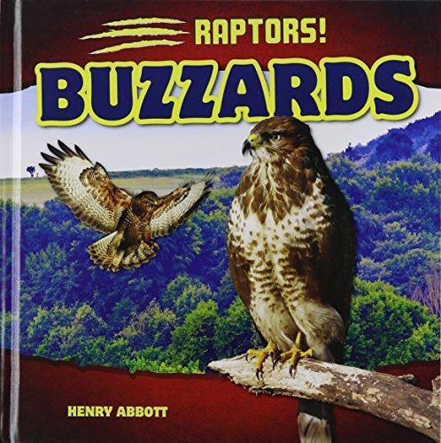 Buzzards (Raptors!)