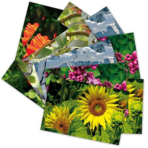 10 hochwertige gru karten natur vi 10 postkarten 5 motive gr e von herzen blumen schnee. Black Bedroom Furniture Sets. Home Design Ideas