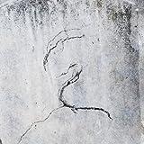 Impressions by Lunatic Soul (2011-11-08)