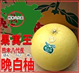 南国フルーツ 熊本産 八代 晩白柚(ばんぺいゆ)1玉