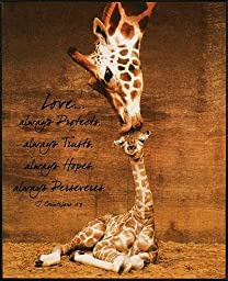 P. Graham Dunn BOF58 Giraffe, First Kiss