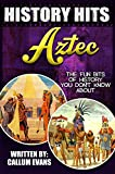 The Fun Bits Of History You Don't Know About AZTECS: Illustrated Fun Learning For Kids (History Hits Book 1)