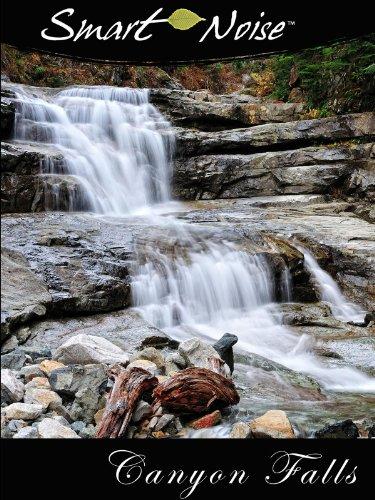 Smart Noise: Canyon Falls