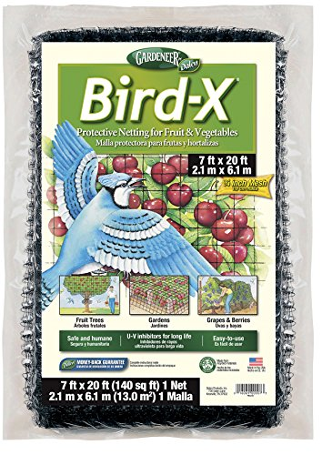 Gardeneer By Dalen Bird-X Protective Netting 7' x 20' (1 Pack) (Tomato Netting compare prices)