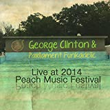 Live at Peach Music Festival 2014