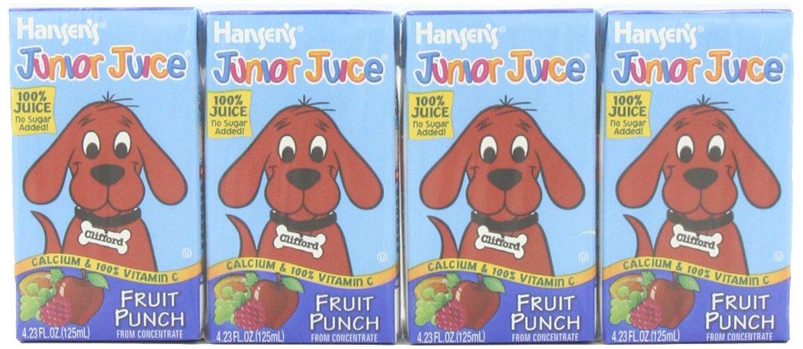 Amazon - Hansen Beverage Junior Juice Punch, 4.23oz-44 pack - $9.24