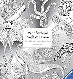 Hobby, Kreatives & Sammeln Sachbücher Gut Ausgebildete Wiener Bronzen Die Bronze Miniaturen Der Jahrhundertwende Battenberg Buch Seiler