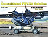 Image of Consolidated PBY-5A Catalina - Walk Around No. 60