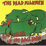 Big Lizard in My Backyard (Vinyl)