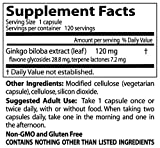Doctors Best Extra Strength Ginkgo (120 mg), 120-Count