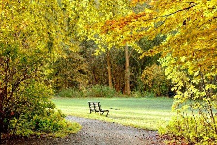 Outdoor - Leinwandbild Herbst 70 x 50 cm