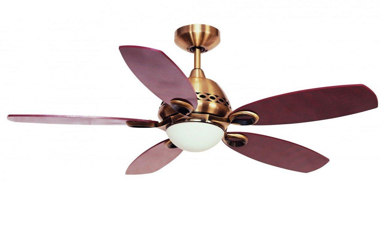 Fantasia Phoenix Ceiling Fan 42in Ant Brass/Light/Remote