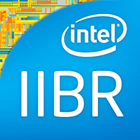 Intel IT Business Review