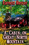 img - for A Cabin on Great North Mountain (Volume 1) book / textbook / text book