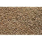 Rye Malt (5 lb) by Briess (Color: Brown, Tamaño: 5 lb)