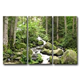 So Crazy Art 3 Pieces Green Wall Art Painting Triberg Germany Mountian River Moss Rock Big Trees Pictures Prints On Canvas Landscape The Picture Decor Oil For Home Modern Decoration Print For Boys Bedroom