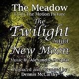 The Meadow - From ''The Twilight Saga: New Moon'' (Alexandre Desplat)single
