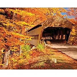 Springbok Autumn Covered Bridge 1000 Piece Jigsaw Puzzle
