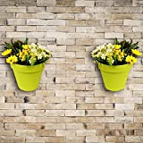 Wonderland Set of 2 High Quality PP Wall mounted & vertical garden planter / pots in Green ( Nail & accessories included)