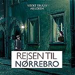 Rejsen til Nørrebro (Sommeren på Carlsholm 2)   Vibeke Bruun Arildsen