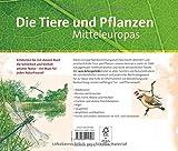 Image de Wegweiser durch die Natur: Die Tiere und Pflanzen Mitteleuropas