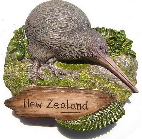 new-zealand-kiwi-bird-kiwis-3d-resin-toy-fridge-magnet-free-ship