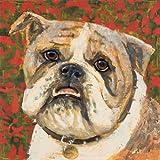 Bull Dog by K. Tomlin Fine Art Canvas 16 x 16 in Gallery Wrap Wall Decor