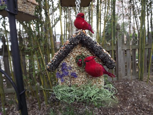 Edible Bird Feeder - Short Dark Birdhouse