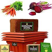 TrustBasket Standard Starter Growkit For Root Vegetables (Carrot,Beetroot)