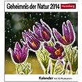 Geheimnis der Natur 2014: Sehnsuchts-Kalender. 53 heraustrennbare Farbpostkarten
