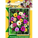 Airex Portulaca Mixed Flower Plant Seeds ( Pack Of 30 Seeds Per Packet)