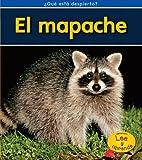 img - for El mapache ( Qu  est  despierto?) (Spanish Edition) book / textbook / text book