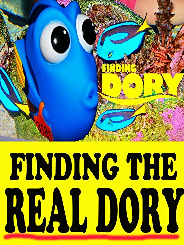 AQUARIUM VISIT ~ Searching for FINDING DORY Learn About Ocean Fish Sharks Nemo Clown Fish