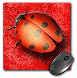 3dRose LLC 8 x 8 x 0.25 Inches Mouse Pad, Pretty Lady Bug on A Beautiful Tapestry Digital Background in Red (mp_128817_1)