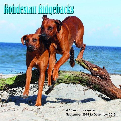 Rhodesian Ridgebacks Calendar - 2015 Wall calendars - Dog Calendars - Monthly Wall Calendar by Magnum