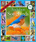 img - for Audubon Songbirds & Other Backyard Birds Calendar 2014 book / textbook / text book