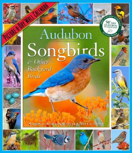 Audubon Songbirds & Other Backyard Birds Calendar 2014