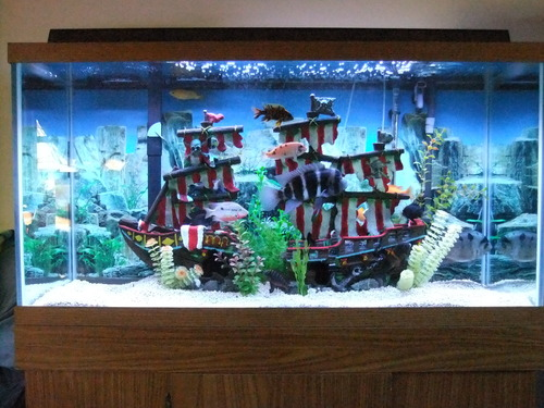 Penn plax large striped sail shipwreck fish for Fish tank pirate ship