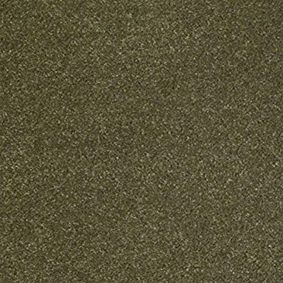Indoor Area Rug - Shaggy carpet for residential or commercial use with Premium BOUND Polyester Edges.