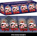 10 PIECE SNOWMAN HOLIDAY EXPRESS TRAIN PATHWAY LIGHT SET