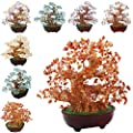 SUNYIK Tumbled Gemstone Money Tree Bonsai Lucky Fengshui Healing Decoration
