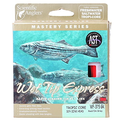 Scientific Anglers Mastery Wet Tip Express Fly Line 200 Grai