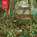 Heart of Darkness Audiobook by Joseph Conrad Narrated by David Horovitch