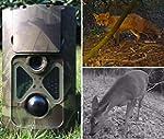 Denver 1080p 8MP WCT-3004 Wildlife Ca...