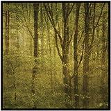 SMART ART - 'Fog in Mountain Trees No. 2' by John W. Golden - Fine Art Print 12x12 inches