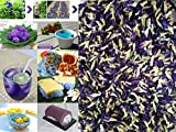100 grams (0.1 kg.) Organic Dried butterfly pea flower Clitoria ternatea Herbs Herbal healthy tea drink recipes food coloring Antioxidants aging wrinkles