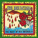 echange, troc Big Mountain - Best of Big Mountain