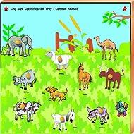 Skillofun Kingsize Identification Tray Common Animals With Knobs, Multi Color
