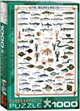 EuroGraphics Fish Shellfish Mollusks 1000 Piece Puzzle