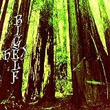 Hex by Bigelf (2010-08-03)